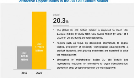 3D Cell Culture Market | Growth, Key Segment Analysis
