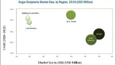 Sugar Excipients Market Overview | Growth Drivers | Restraints | Opportunities and Trends | Insights by Geography | Competitive Landscape